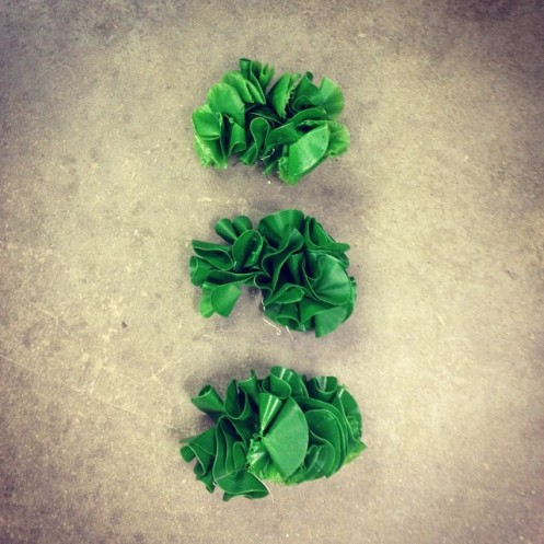 sea_lettuce_no1_1