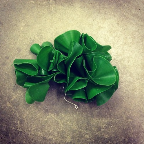 sea_lettuce_no1_3