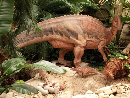 Dino Crest p